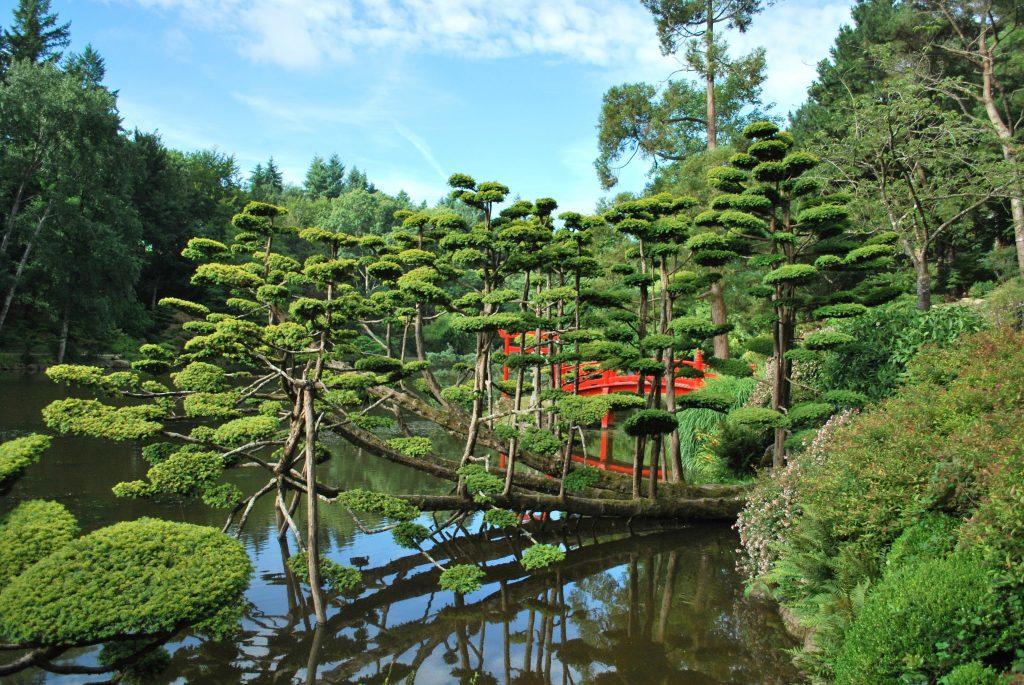 Comment protéger les jardins japonisants en France ?